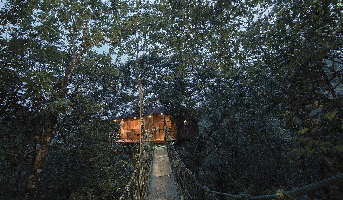 best tree house resort in wayanad