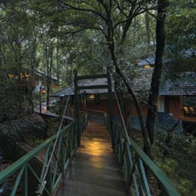 Wayanad resorts - stay with us