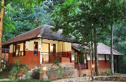 Vythiri resorts - vythiry haven - luxuray nature cottage
